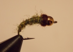 Caddis Fly Bead Nymph